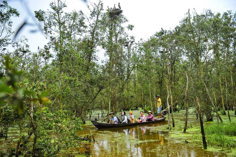 Vườn quốc gia Tràm Chim tọa lạc ở huyện Tam Nông, tỉnh Đồng Tháp. Ảnh: Minh Đức.