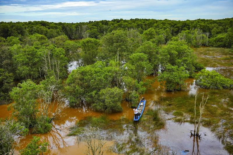 Vườn quốc gia Tràm Chim có tổng diện tích 7.313 ha. Nó nằm trong địa giới của 5 xã (Phú Đức, Phú Hiệp, Phú Thành B, Phú Thọ, Tân Công Sính) và Thị trấn Tràm Chim. Ảnh: Minh Đức.