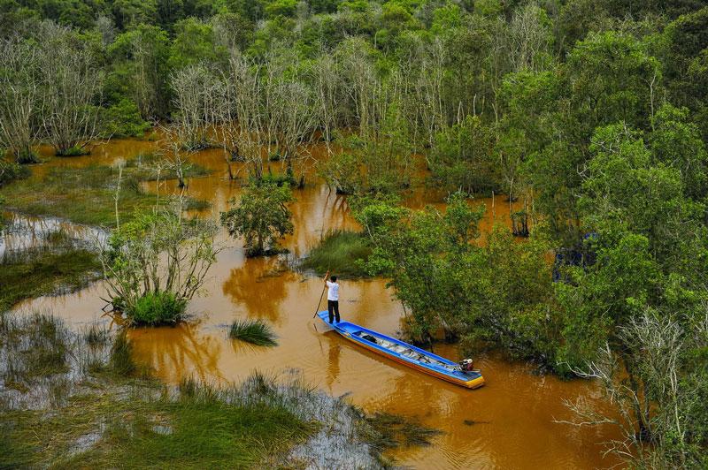 Đây khu đất ngập nước, được xếp trong hệ thống rừng đặc dụng của Việt Nam. Ảnh: Minh Đức.