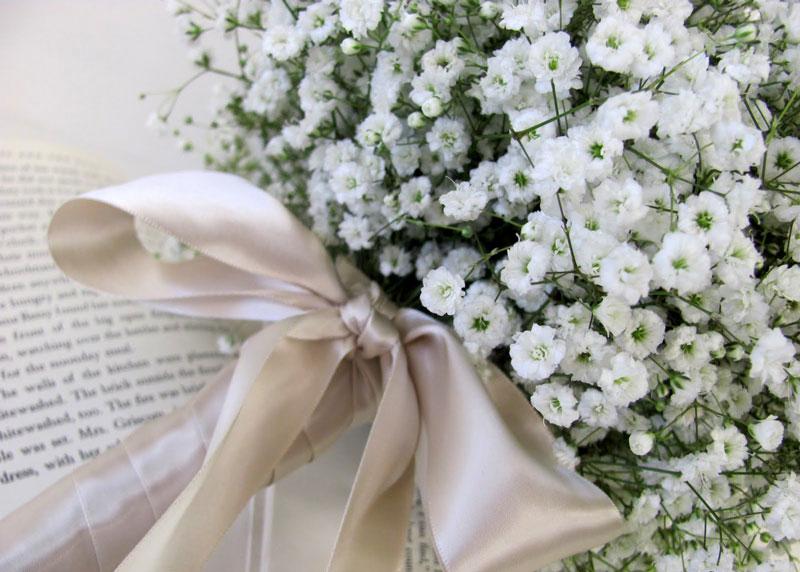 Nó đẹp và mong manh như hơi thở trẻ con vì vậy nó tượng trưng cho tình yêu tinh khiết, ngây thơ, trong trắng.