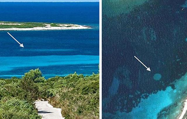 Vòng tròn thần tiên dưới đáy biển Đan Mạch. Ảnh: Science Advances.