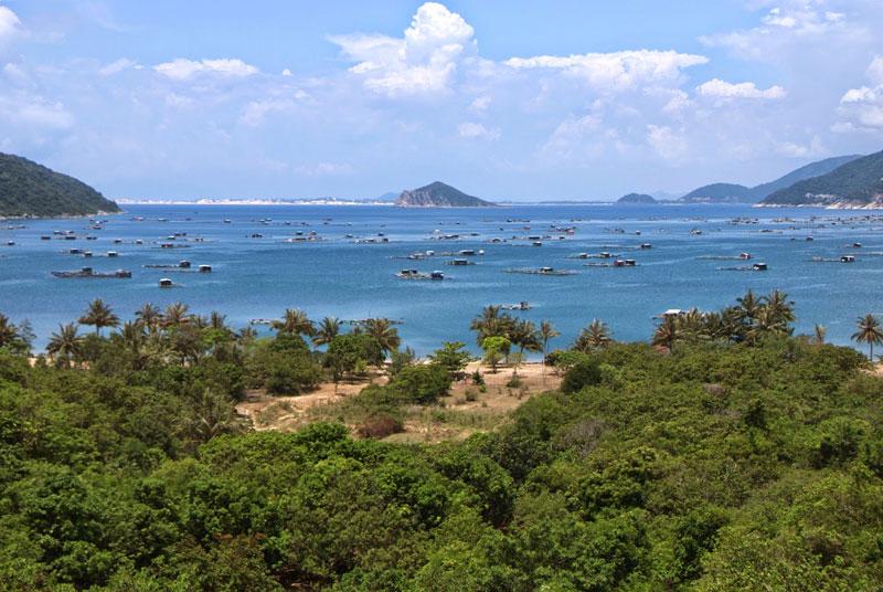 Ven bờ biển Vũng Rô có nhiều bãi cát vừa và nhỏ. Một số bãi đẹp như Bãi Chùa, Bãi Bàng, Bãi Lau. Trong lòng vịnh có nhiều loại tôm cá trú ngụ. Dưới đáy biển còn có nhiều loại san hô rất đẹp và độc đáo. Ảnh: Vietnamvoyagesblog.