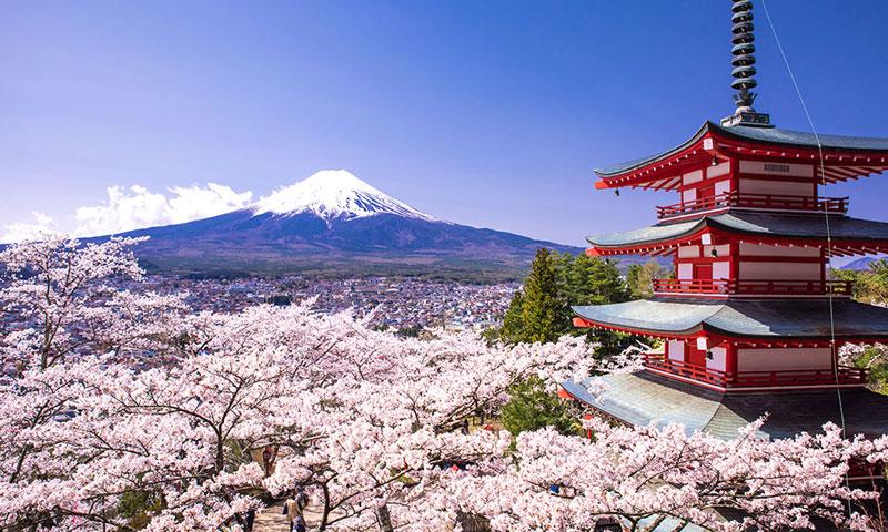 7. Nhật Bản. Là quốc gia hải đảo ở vùng Đông Á. Ngoài việc được biết đến là đất nước phát triển bậc nhất thế giới thì Nhật Bản còn nổi tiếng là nơi có cuộc sống bình an, trong lành.
