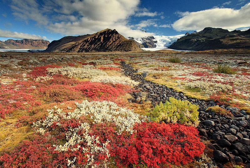 8. Iceland. Đây là đảo quốc thuộc khu vực châu Âu theo thể chế cộng hòa đại nghị. Sau khi giành được độc lập, nền kinh tế quốc gia này đã phát triển mạnh mẽ, cùng với hệ thống phúc lợi xã hội vào hàng tốt nhất thế giới. Iceland là một trong những quốc gia yên tĩnh và an toàn nhất trên toàn cầu.