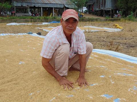 'Hai lúa' suốt 25 năm 'nói không' với thuốc trừ sâu