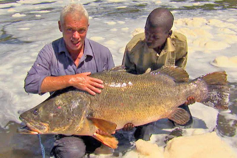 """Câu được cá rô sông Nile nặng hơn 45kg. Trong cuộc hành trình đi tìm cá """"khủng"""" ở những nơi nguy hiểm nhất thế giới, cần thủ Jeremy Wade đã may mắn tóm được một chú cá rô sông Nile nặng hơn 45kg tại thác nước trên sông Congo. (CHI TIẾT)"""