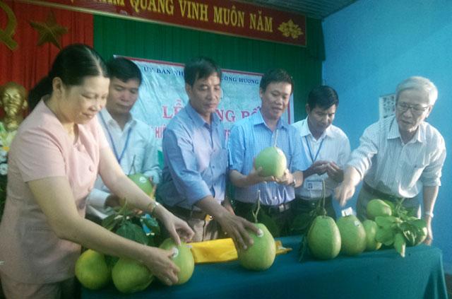 Tổ chức dán nhãn hiệu tại hộ thành viên Phạm Bằng tại thôn Lại Bằng, phường Hương Vân.