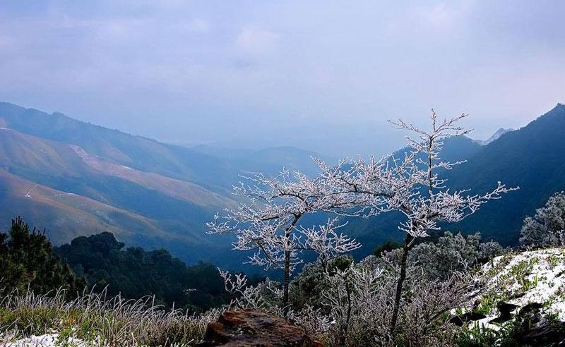 Nhiệt độ trung bình ở đây là 15,5 độ C, đỉnh núi quanh năm có mây phủ. Ảnh: Minh Dân.