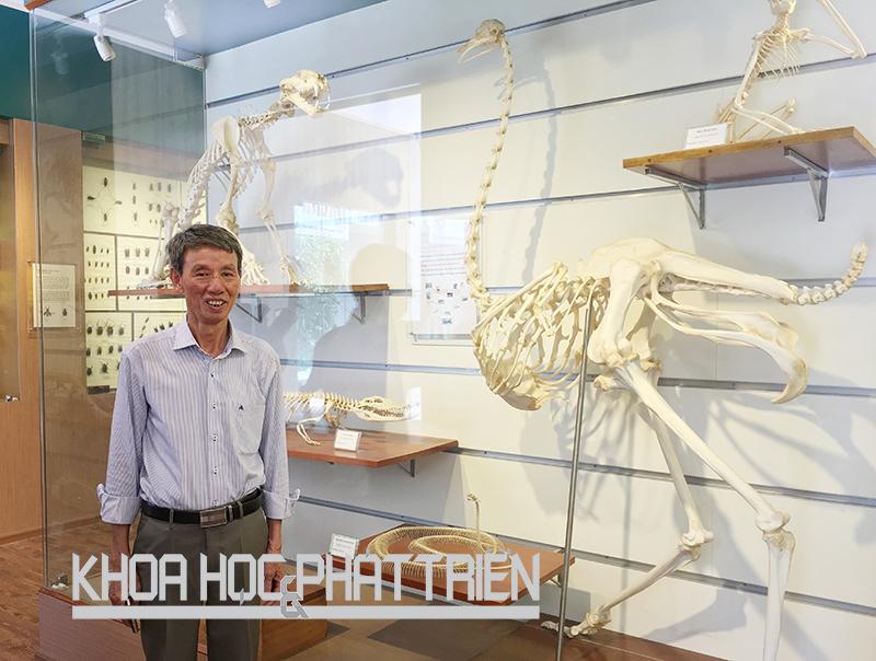 Phó Giáo sư - tiến sỹ Phạm Văn Lực tại Bảo tàng Thiên nhiên Việt Nam. Ảnh: Ngọc Vũ