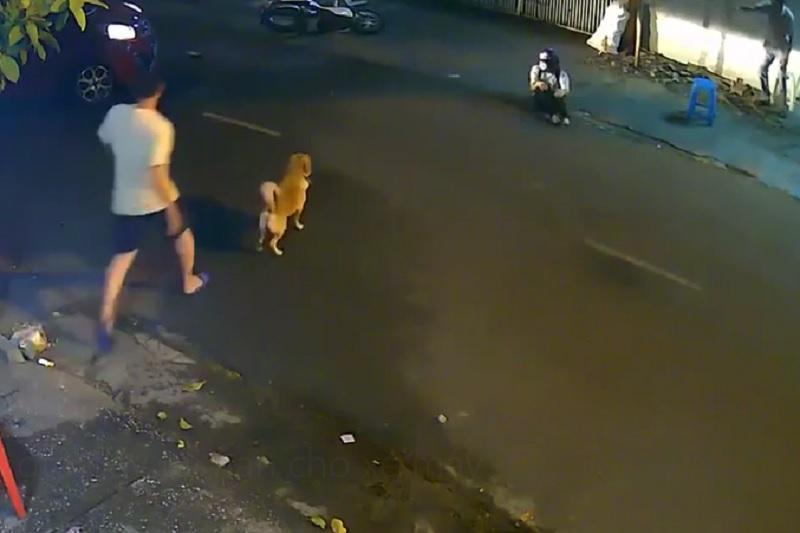 Quay đầu ẩu, ôtô gây tai nạn cho xe máy. Trong đêm tối, ôtô quay đầu không quan sát, va chạm với xe máy đi từ sau tới khiến chủ phương tiện ngã văng ra đường. (CHI TIẾT)