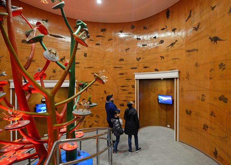 Bảo tàng Thiên nhiên Việt Nam ngay tại Hà nội CÓ GÌ NHỈ? 2