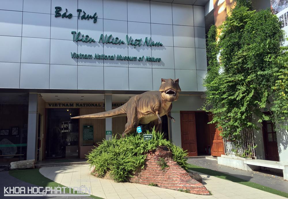 Bảo tàng thiên nhiên Việt Nam nằm phía bên trong của Viện hàn lâm khoa học công nghệ Việt Nam, tại số 18 Hoàng Quốc Việt (Hà Nội).