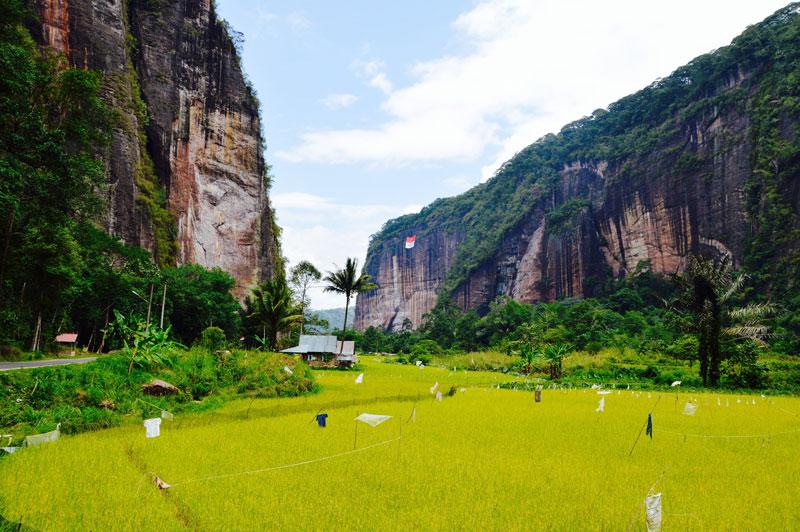 7. Harau. Thung lũng này tọa lạc ở thị trấn Payakumbuh, Indonesia. Harau là một hẻm núi tuyệt đẹp, được bao phủ bởi màu xanh của lúa và cây cối. Sự tĩnh lặng và không khí trong lành chính là điểm cộng thu hút khách du lịch của vùng đất này.