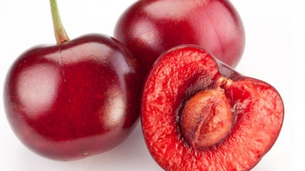 Trong hạt cherry chứa lượng lớn cyanua