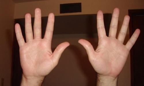 Con người có 10 ngón tay linh hoạt để cầm nắm các đồ vật. Ảnh: Instructables.