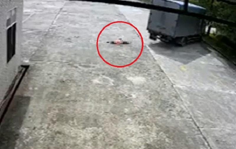 Đang đi bộ trong sân công ty, nữ công nhân bị xe tải cán chết tại Hải Phòng. Đang đi bộ trong sân nhà máy, người phụ nữ bị chiếc xe tải chạy từ phía sau lao tới đâm ngã, cuốn vào gầm, kéo lê 5m dẫn đến tử vong. (CHI TIẾT)