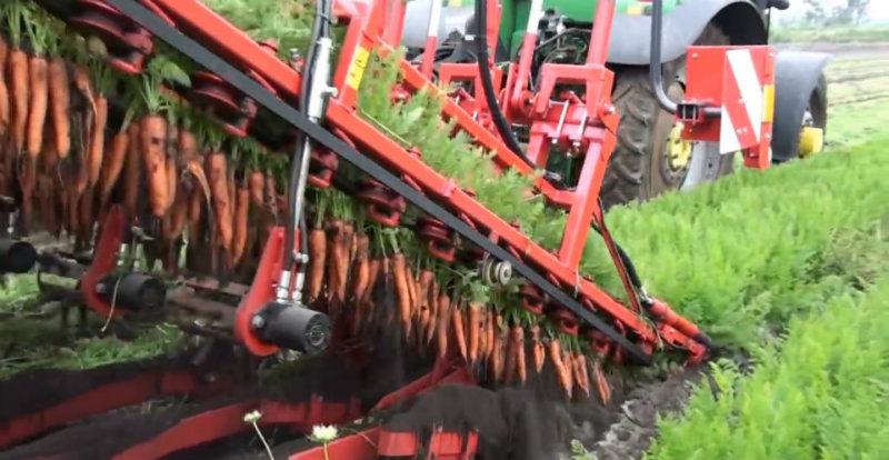 Máy GBC thu hoạch cà rốt siêu đẳng tại Na Uy. Ảnh: Autoevolution