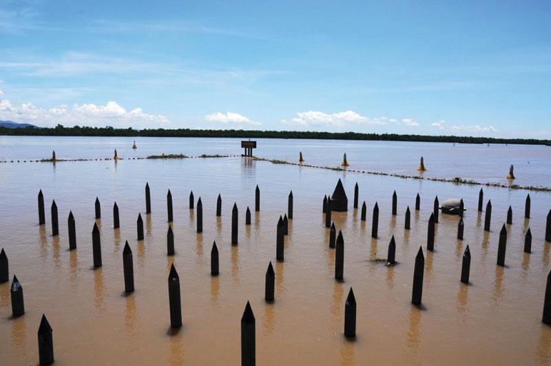 Điểm đầu của sông Bạch Đằng là phà Rừng (ranh giới Hải Phòng và Quảng Ninh). Ảnh: Baocamau.