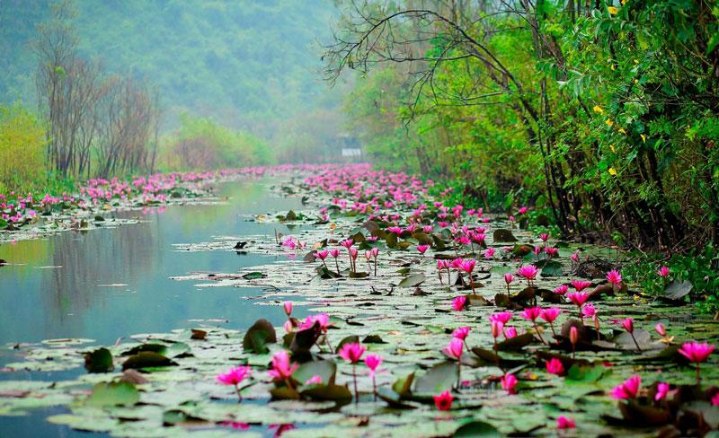 Suối nằm cách trung tâm thành phố Hà Nội khoảng 65 km. Ảnh: Vietnammoi.