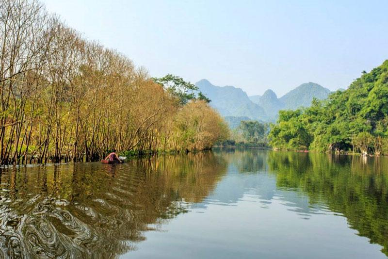 Ảnh: Nguyễn Đình Thành.