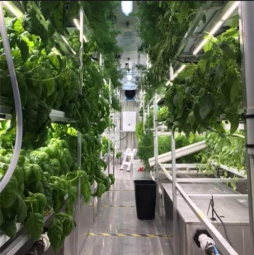 Trồng rau trong container - giải pháp cho người dân Bắc Cực - 2