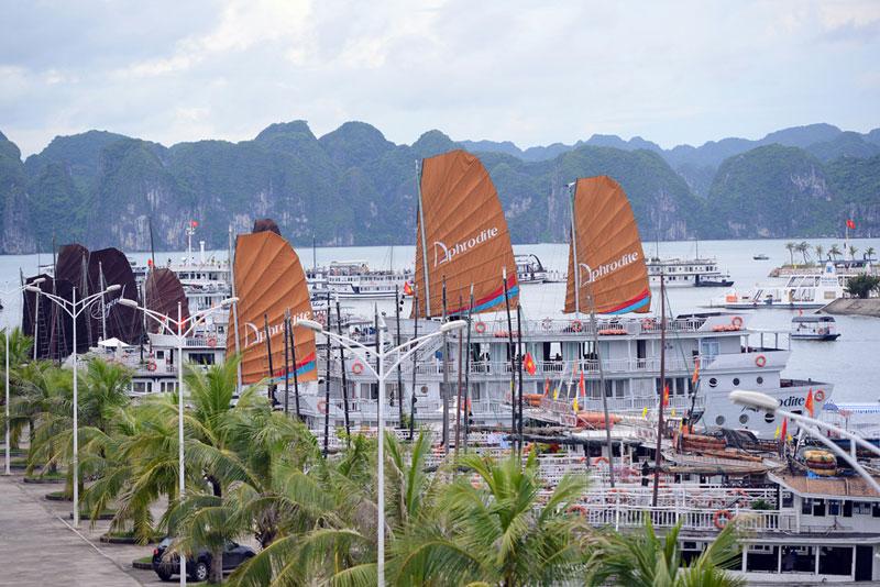 Cảng Tuần Châu đã được Tổ chức Kỷ lục Việt Nam xác lập là Cảng du thuyền nhân tạo lớn nhất Việt Nam. Ảnh: Tuấn Mark.