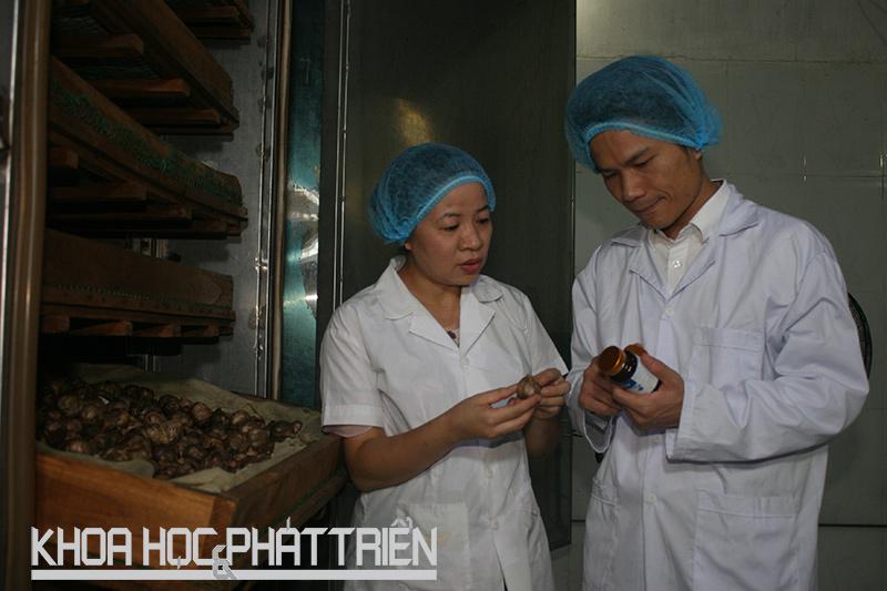 Ths Bá Thị Châm và cộng sự tại xưởng sơ chế, lên men thảo dược. Ảnh: Minh Anh