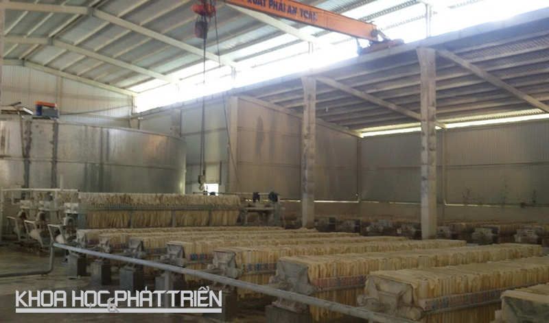 Nhà máy chế biến cao lanh hiện hữu tại Công ty Trung Thành