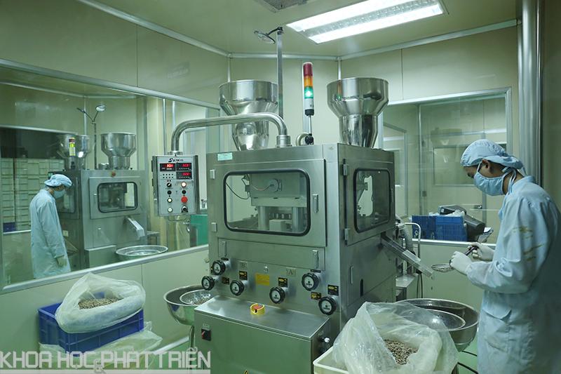 Nhân viên của Công ty Cổ phần Dược Danaphalàm đang thực hiện công đoạn dập viên thuốc dược liệu. Ảnh: Lê Loan
