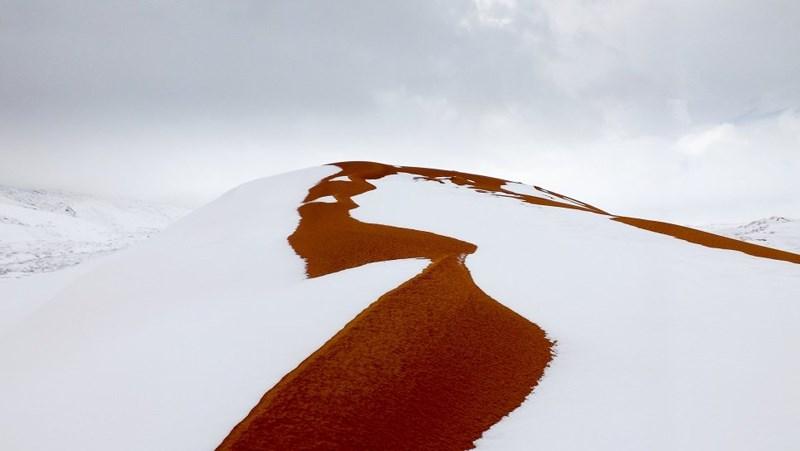 Ở sa mạc Sahara, nơi được biết đến với sức nóng khủng khiếp, tuyết bất ngờ phủ kín thị trấn Ain Sefra, Algeria.
