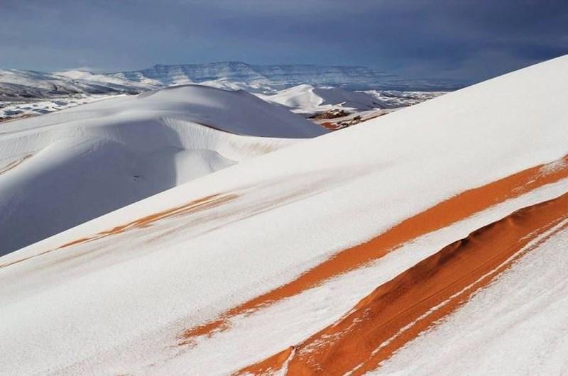 Tuyết trắng xóa tạo cảnh tượng đẹp mắt