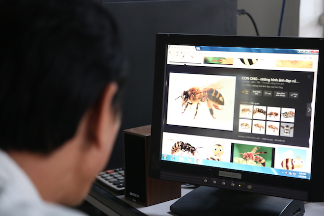 Thiết kế trong mơ của chiếc máy bay tự chế này là hình ảnh con ong thợ.