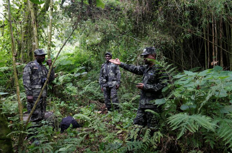 Các nhân viên giám sát làm nhiệm vụ tại Vườn quốc gia các núi lửa ở Rwanda.
