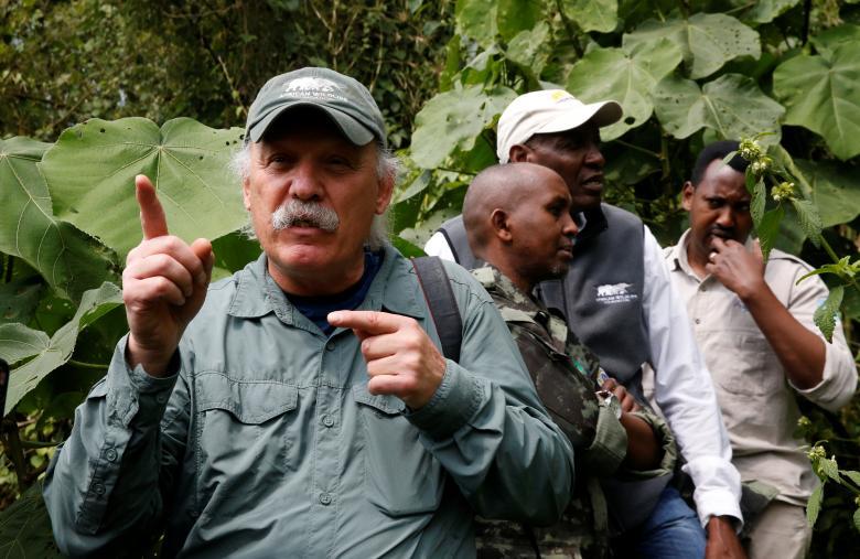 """Nhà sinh thái học Craig Sholley tham gia chương trình """"Gorillaz trekking"""" ở Rwanda."""