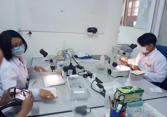 Phòng côn trùng học, nơi các chuyên gia thực hiện hoạt động phân loại muỗi, nuôi muỗi Wolbachia