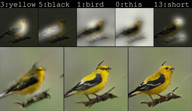 Hệ thống AI của Microsoft có thể giúp vẽ ra bức hình một con chim theo mô tả của bạn.