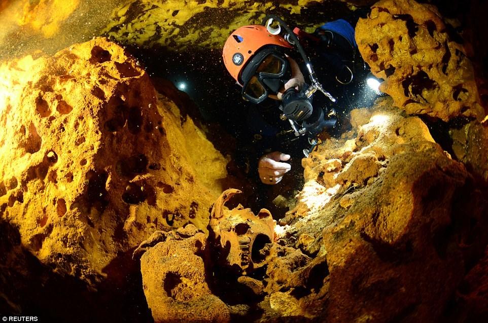 Hơn 200 hang nhỏ, trong đó khoảng 263 km thuộc hang Sac Actun thông với hang Dos Ojos dài khoảng 83 km, tạo thành hang động dưới nước lớn nhất thế giới. (Nguồn: Reuters)