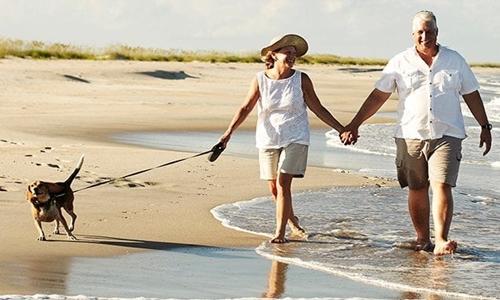 Việc nghỉ hưu có thể làm cho chức năng não suy giảm nhanh chóng. Ảnh: Telegraph.