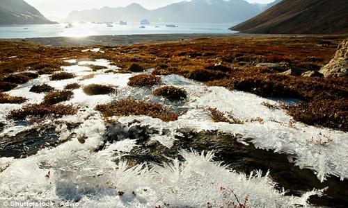 Tầng đất bị đóng băng vĩnh cửu ở Bắc Cực là nơi tích trữ thủy ngân lớn nhất thế giới. Ảnh: Shutterstock.