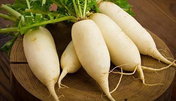 Củ cải trắng được ví như nhân sâm trắng