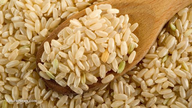 Gạo hữu cơ đang làm một cuộc cách mạng trong nông nghiệp tại Ấn Độ. Ảnh: Naturalnews.com