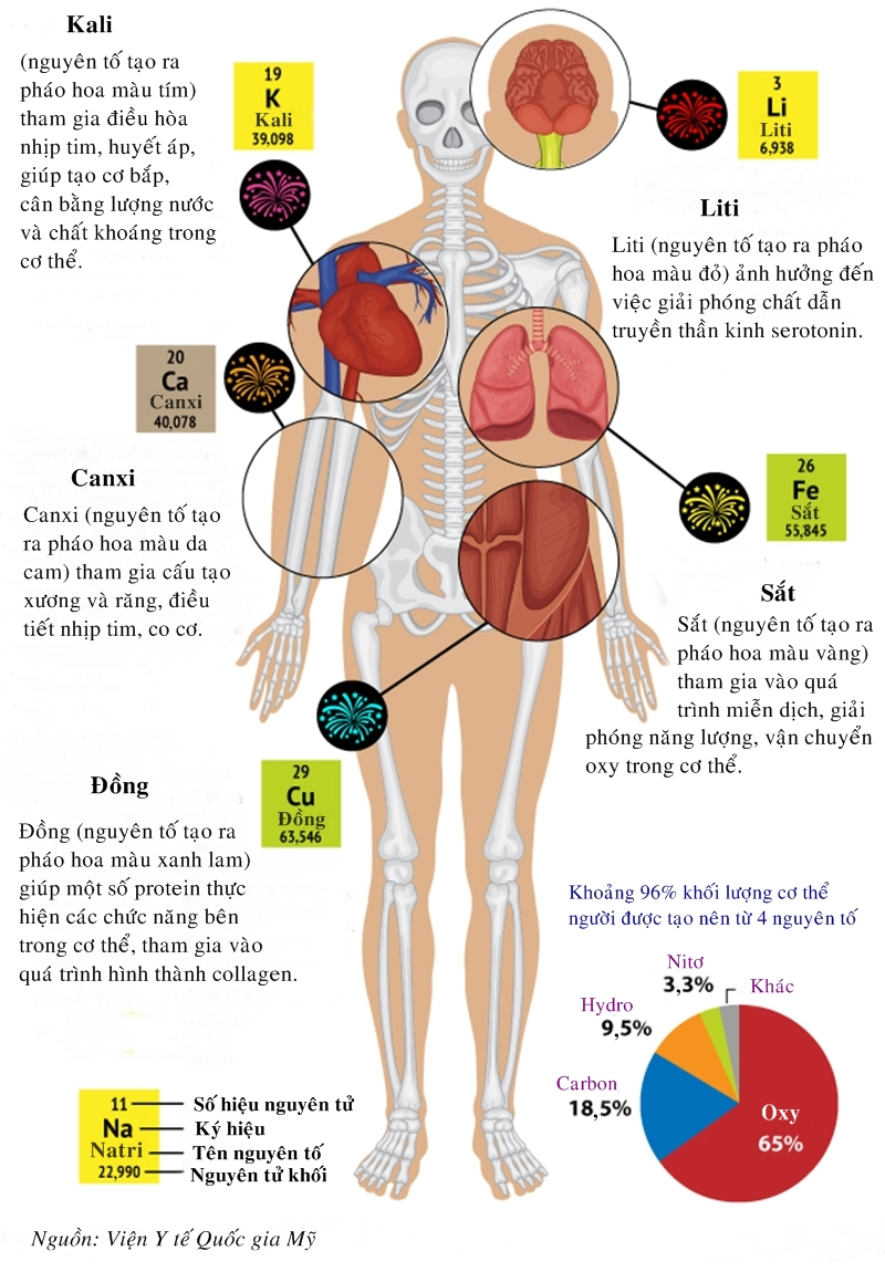 Các nguyên tố hóa học cấu tạo cơ thể người có trong pháo hoa