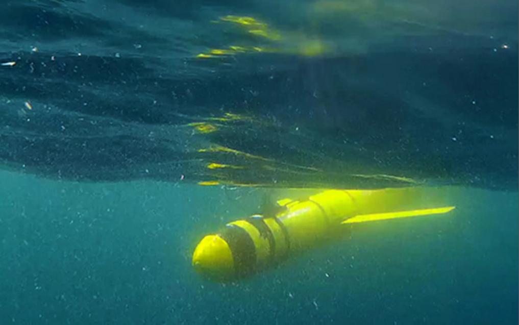 Seagliders thăm dò những khu vực nghèo oxy tại vịnh Oman mà trước đó nằm ngoài khả năng tiếp cận của giới nghiên cứu. Ảnh: Đại học East Anglia (Anh)