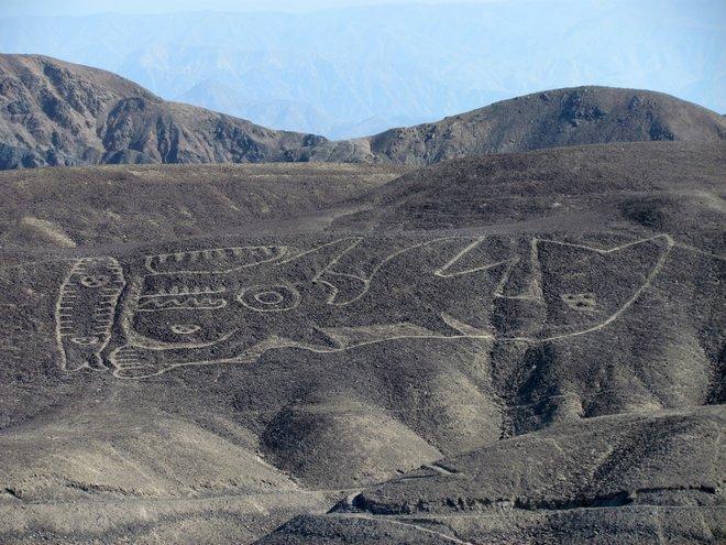 Một hình vẽ khổng lồ ở Palpa, Peru. (Nguồn: livescience.com)