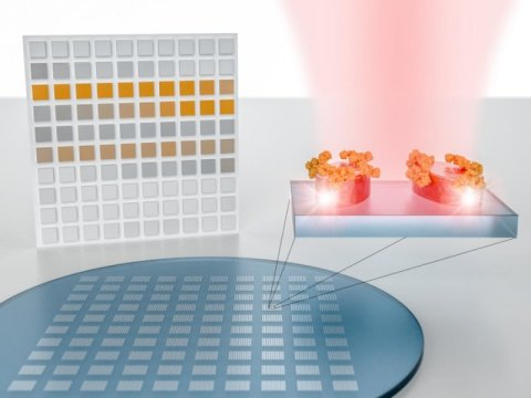 Các tác giả cho thấy hình ảnh một siêu bề mặt cảm biến dạng pixel thuộc quang phổ học phân tử. Nó bao gồm các metapixels (siêu điểm ảnh) được tạo ra để tập trung khối lượng ánh sáng thành kích thước nano, nhằm khuếch đại và phát hiện vân tay hấp thụ của các phân tử mẫu phân tích, ở các bước sóng cộng hưởng cụ thể. Kết quả hiển thị đồng thời dựa trên hình ảnh của tất cả các siêu điểm ảnh cho ta một bản đồ không gian của phân tử vân tay hấp thụ, lấy mẫu từ các bước sóng cộng hưởng riêng lẻ. Bản đồ hấp thụ dạng pixel này có thể được xem như là một mã vạch hai chiều của phân tử  vân tay, mã hóa các dải hấp thụ đặc trưng như thuộc tính của hình ảnh kết quả. Nguồn: EPFL