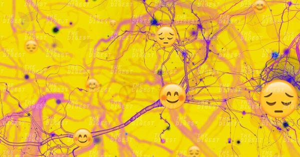 Có thể đọc được tâm trạng nhờ phân tích tín hiệu sóng não. Ảnh: Futurism.