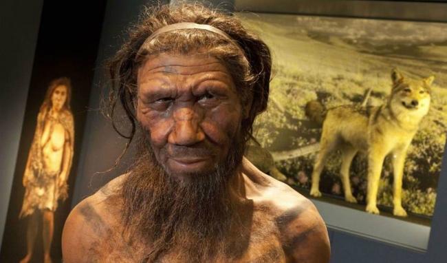 Người Neanderthal đã giúp chúng ta chống lại bệnh truyền nhiễm như cúm, viêm gan - Ảnh: Independent