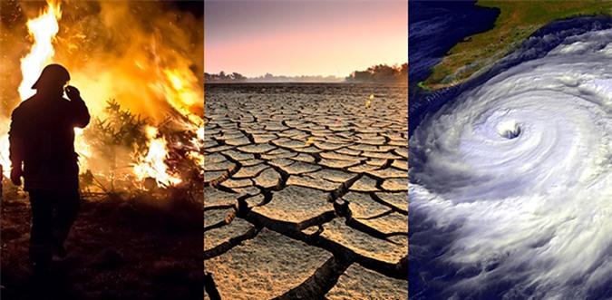 Hậu quả của biến đổi khí hậu