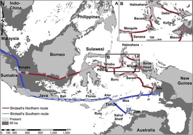 Năm 1977,Joseph Birdsell xác định 2 tuyến đường có thể được những người đầu tiên di cư sử dụng. Nghiên cứu của Đại học quốc gia Úc cho thấy tuyến đường phương Bắc ( màu đỏ) có nhiều khả năng hơn - Ảnh: Shimona Kealy / ANU