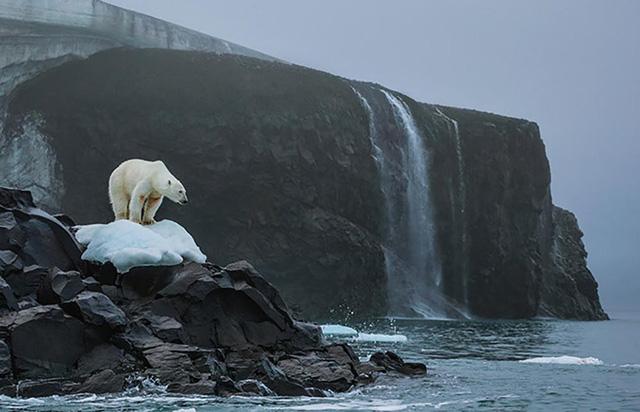 Nhiệt độ đại dương đang ấm lên hơn 60% khiến các nhà khoa học vô cùng lo ngại.